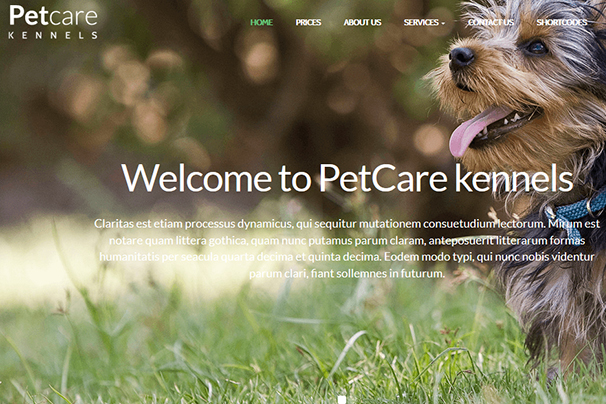 PetCare Kennels