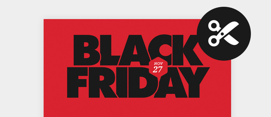 Black Friday WordPress Deals