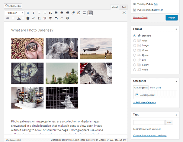 Photo Gallery - WordPress Editor